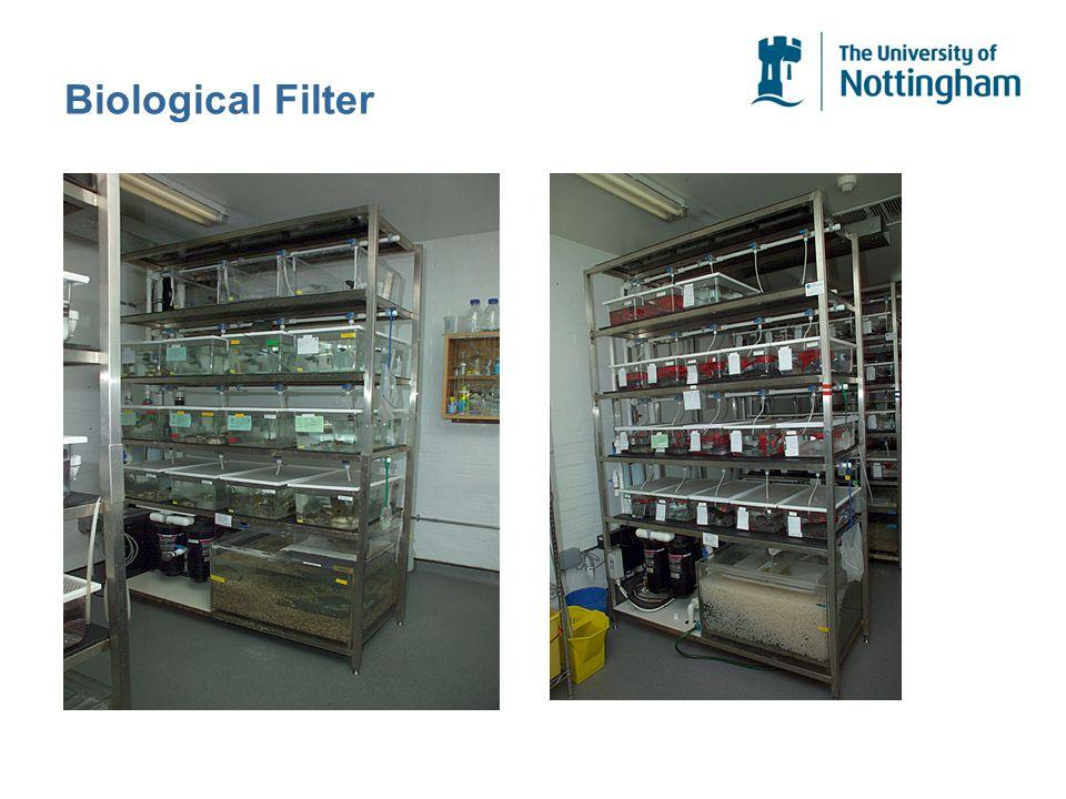 Biological Filter