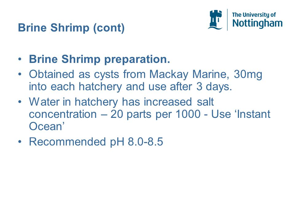 Brine Shrimp (cont) Brine Shrimp preparation. Obtained as cysts from Mackay Marine, 30mg into each hatchery and use after 3 days. Water in hatchery ha