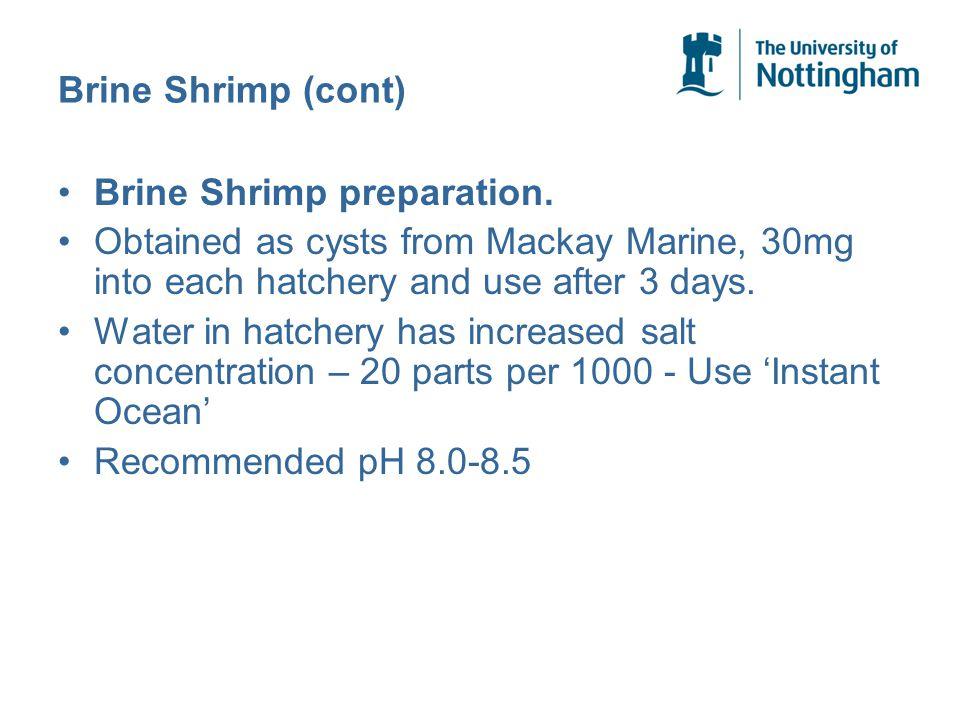 Brine Shrimp (cont) Brine Shrimp preparation.