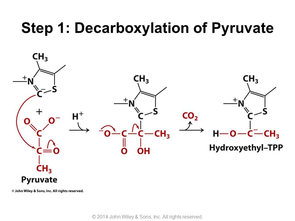 Step 1: Decarboxylation of Pyruvate © 2014 John Wiley & Sons, Inc. All rights reserved.