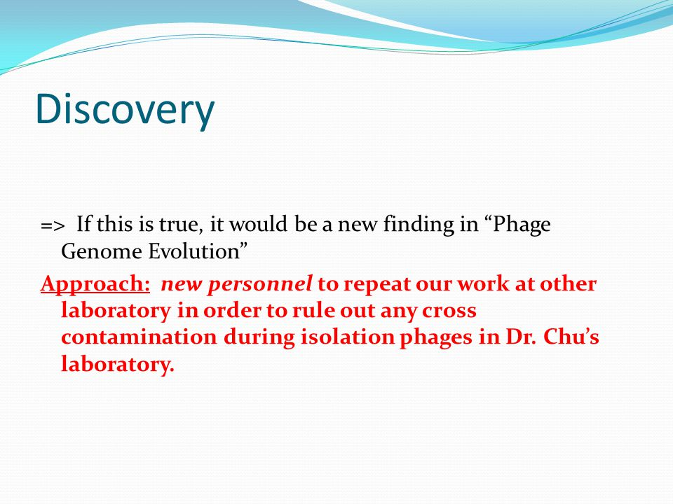 """Discovery => If this is true, it would be a new finding in """"Phage Genome Evolution"""" Approach: new personnel to repeat our work at other laboratory in"""