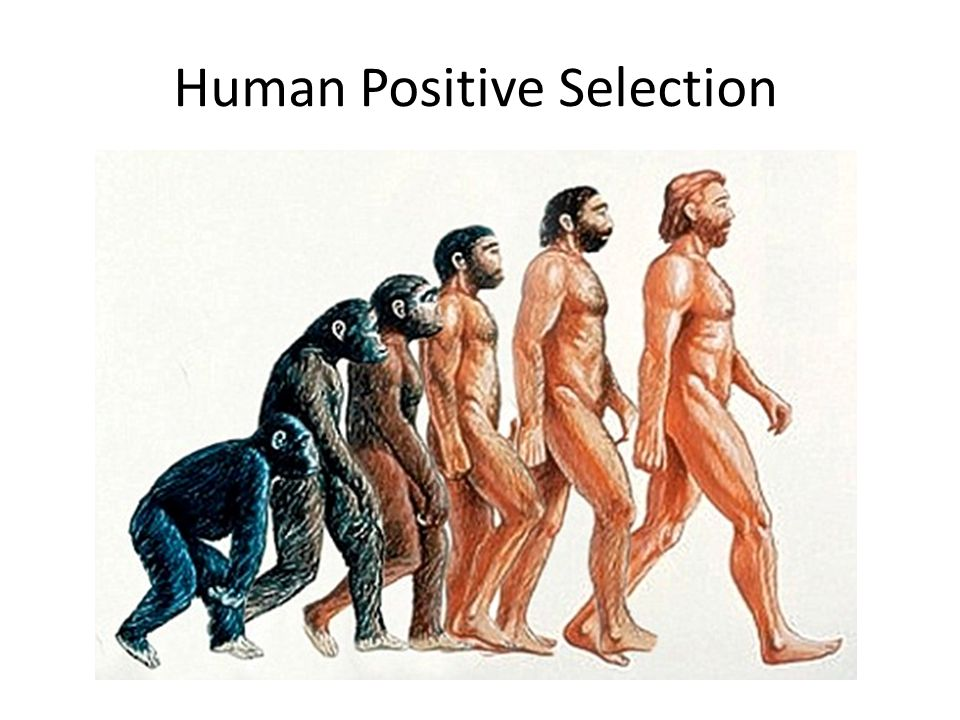 Human Positive Selection