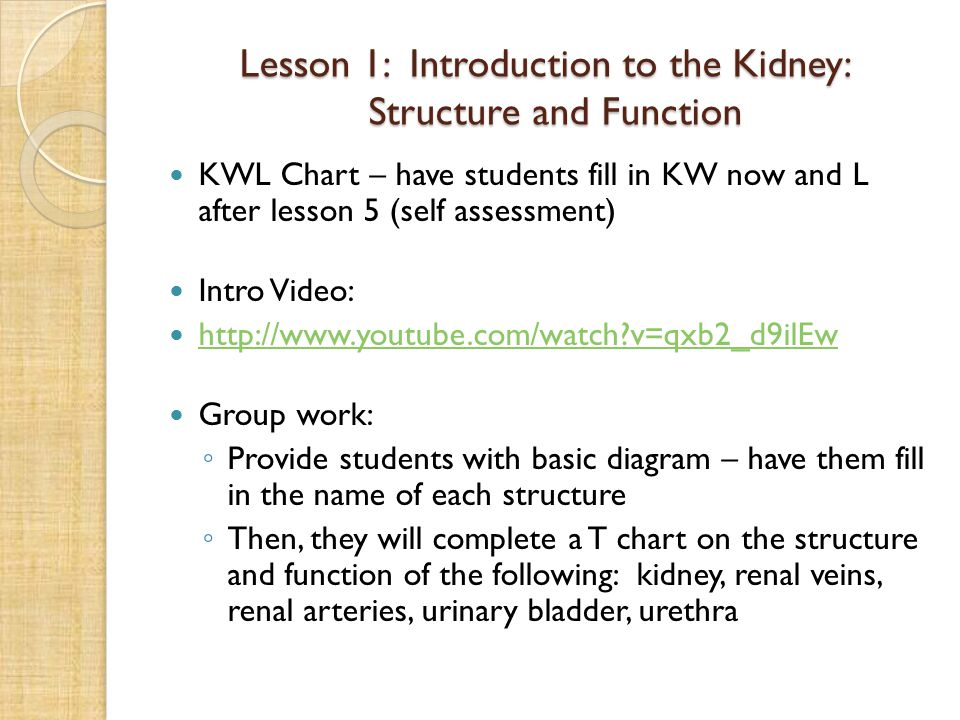 Lesson 1: Introduction to the Kidney: Structure and Function KWL Chart – have students fill in KW now and L after lesson 5 (self assessment) Intro Video: http://www.youtube.com/watch?v=qxb2_d9ilEw Group work: ◦ Provide students with basic diagram – have them fill in the name of each structure ◦ Then, they will complete a T chart on the structure and function of the following: kidney, renal veins, renal arteries, urinary bladder, urethra