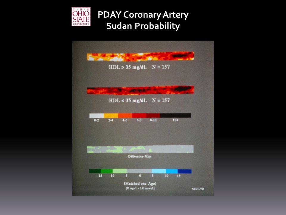 PDAY Coronary Artery Sudan Probability