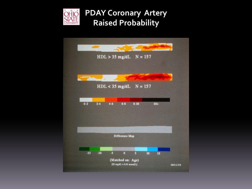 PDAY Coronary Artery Raised Probability