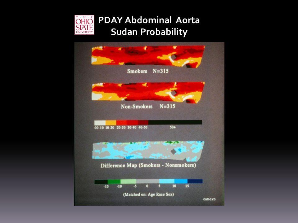 PDAY Abdominal Aorta Sudan Probability