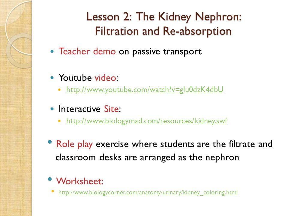 Teacher demo on passive transport Youtube video: http://www.youtube.com/watch?v=glu0dzK4dbU Interactive Site: http://www.biologymad.com/resources/kidn