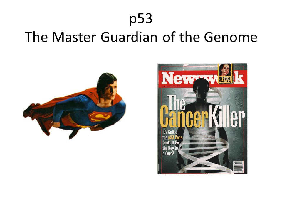 p53 The Master Guardian of the Genome