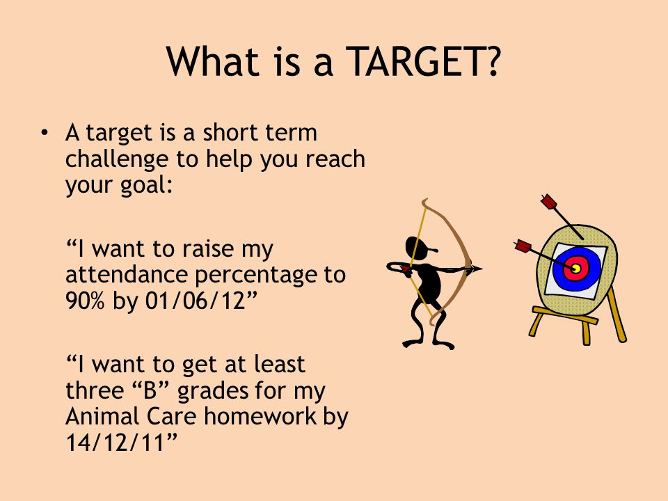 What is a TARGET.