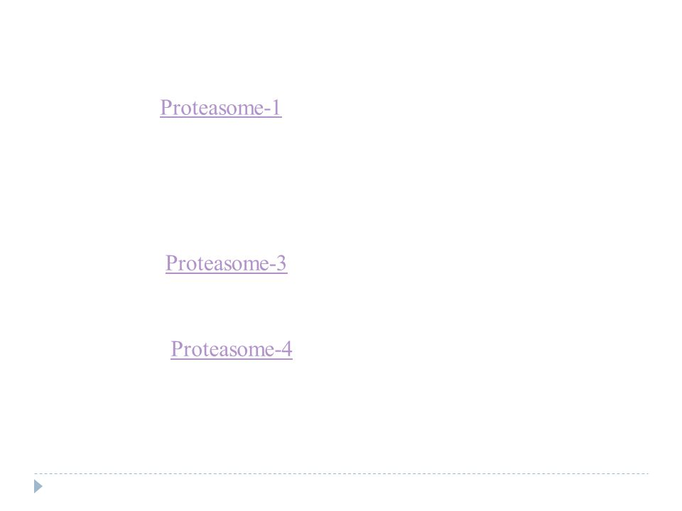 Proteasome-1 Proteasome-3 Proteasome-4