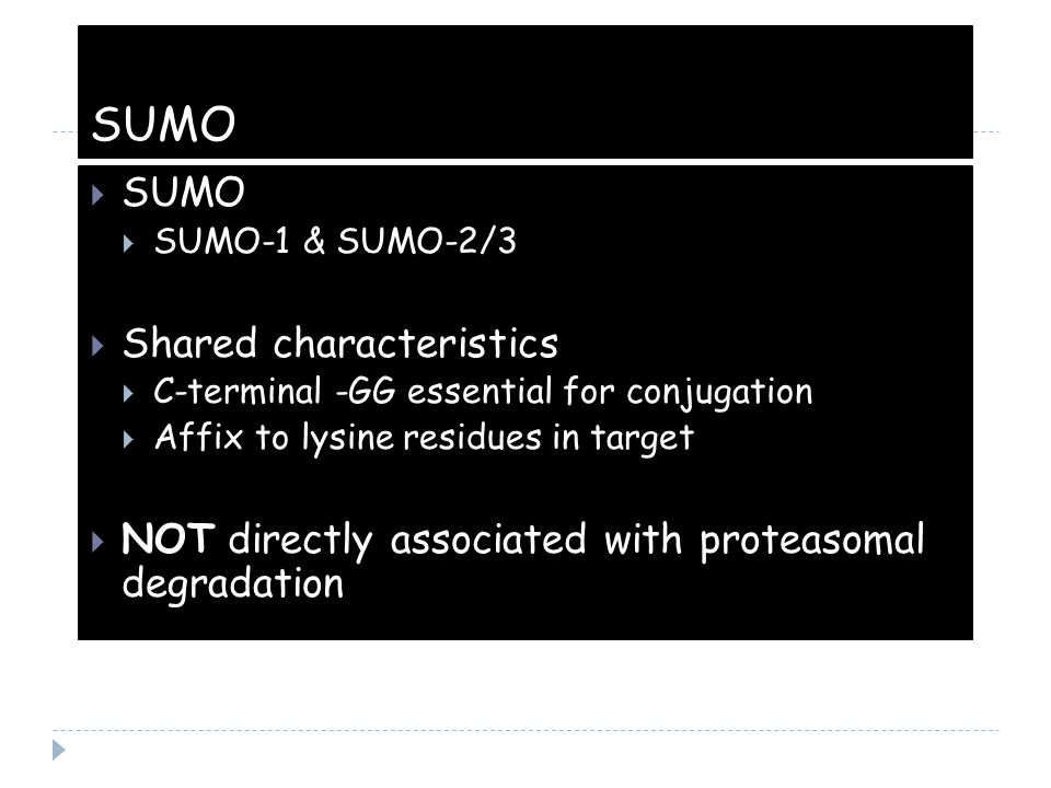 SUMO  SUMO  SUMO-1 & SUMO-2/3  Shared characteristics  C-terminal -GG essential for conjugation  Affix to lysine residues in target  NOT directl