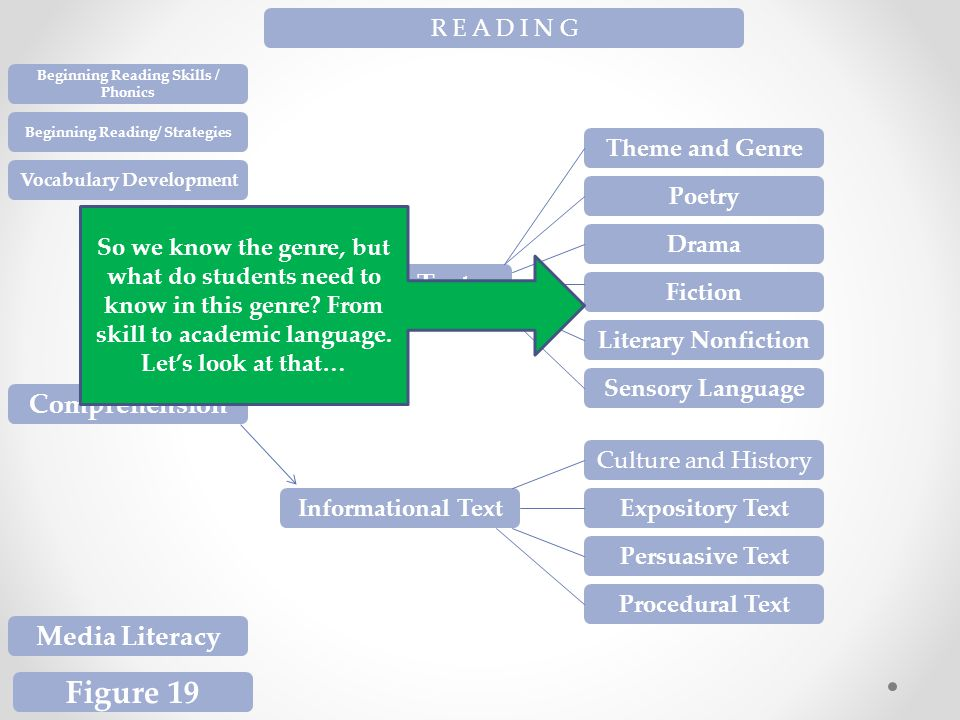R E A D I N G Beginning Reading Skills / Phonics Beginning Reading/ Strategies Vocabulary Development Comprehension Media Literacy Figure 19 Literary