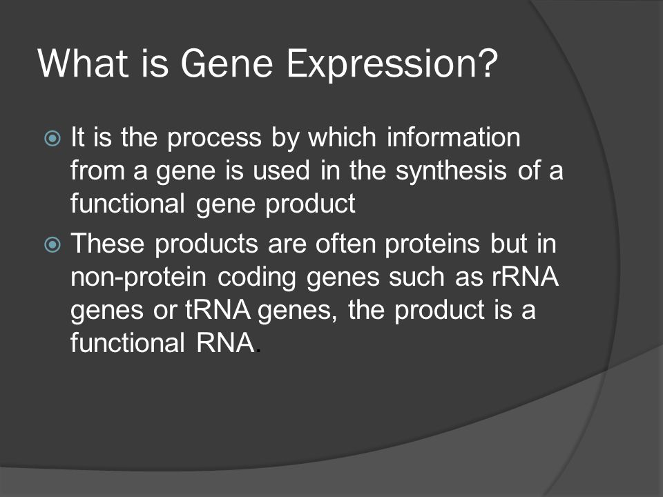 What is Gene Expression.