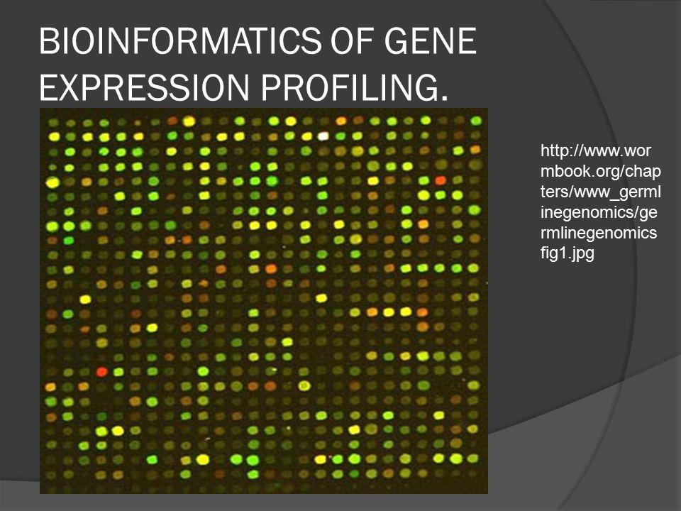 BIOINFORMATICS OF GENE EXPRESSION PROFILING.