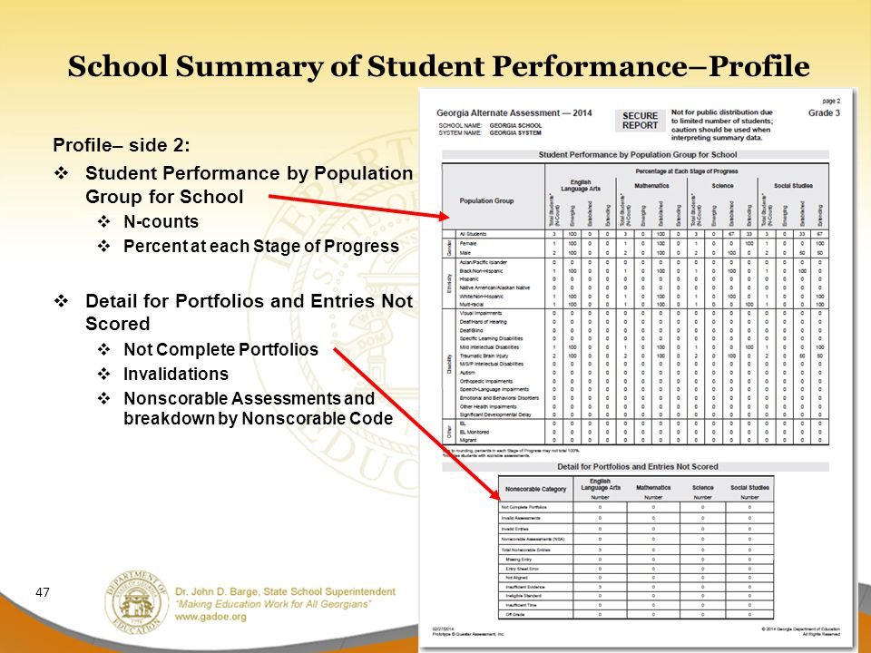 School Summary of Student Performance–Profile Profile– side 2:  Student Performance by Population Group for School  N-counts  Percent at each Stage of Progress  Detail for Portfolios and Entries Not Scored  Not Complete Portfolios  Invalidations  Nonscorable Assessments and breakdown by Nonscorable Code 47