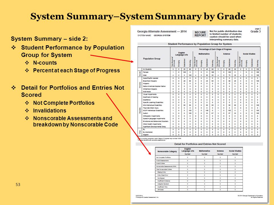 System Summary–System Summary by Grade System Summary – side 2:  Student Performance by Population Group for System  N-counts  Percent at each Stage of Progress  Detail for Portfolios and Entries Not Scored  Not Complete Portfolios  Invalidations  Nonscorable Assessments and breakdown by Nonscorable Code 53