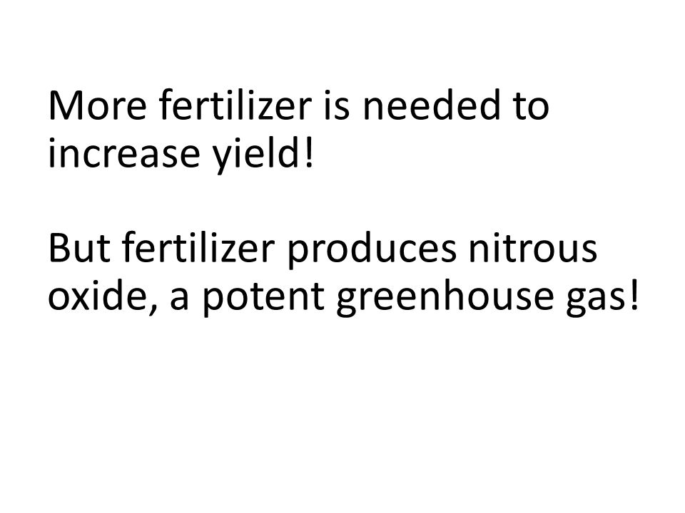 More fertilizer is needed to increase yield.