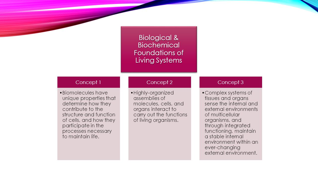 Biological & Biochemical Foundations of Living Systems Concept 1 Biomolecules have unique properties that determine how they contribute to the structu