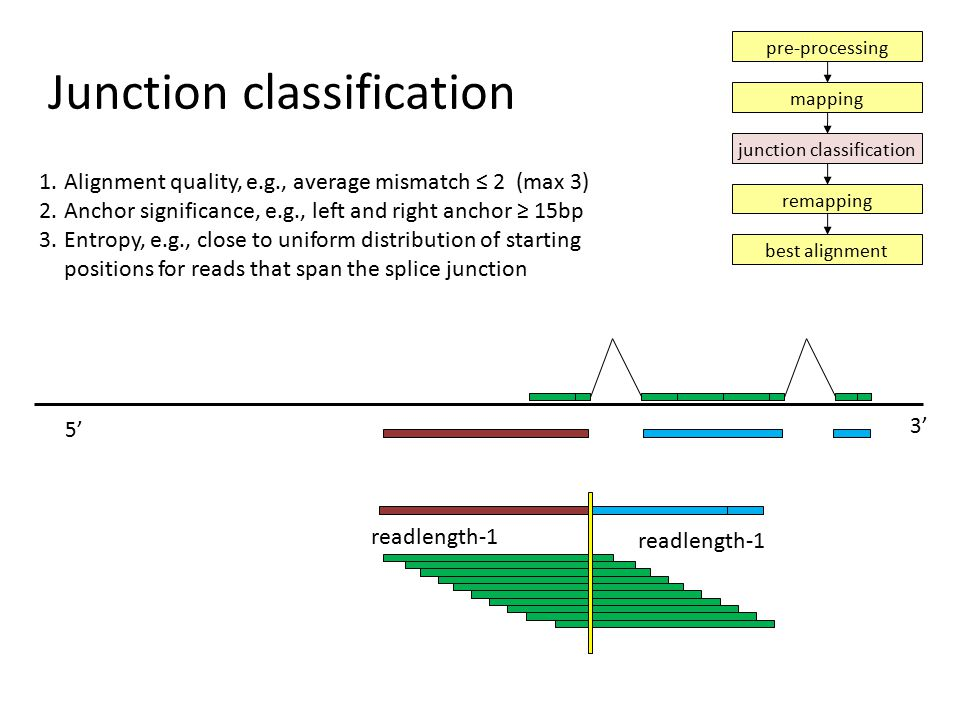 Junction classification 1.Alignment quality, e.g., average mismatch ≤ 2 (max 3) 2.Anchor significance, e.g., left and right anchor ≥ 15bp 3.Entropy, e