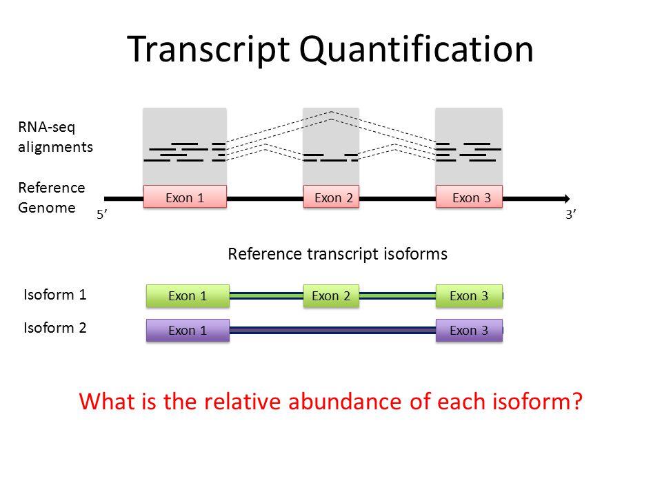 3' Exon 1Exon 2Exon 3 RNA-seq alignments Reference Genome 5' Isoform 1 Isoform 2 Reference transcript isoforms Exon 1Exon 2Exon 3 Exon 1Exon 3 What is