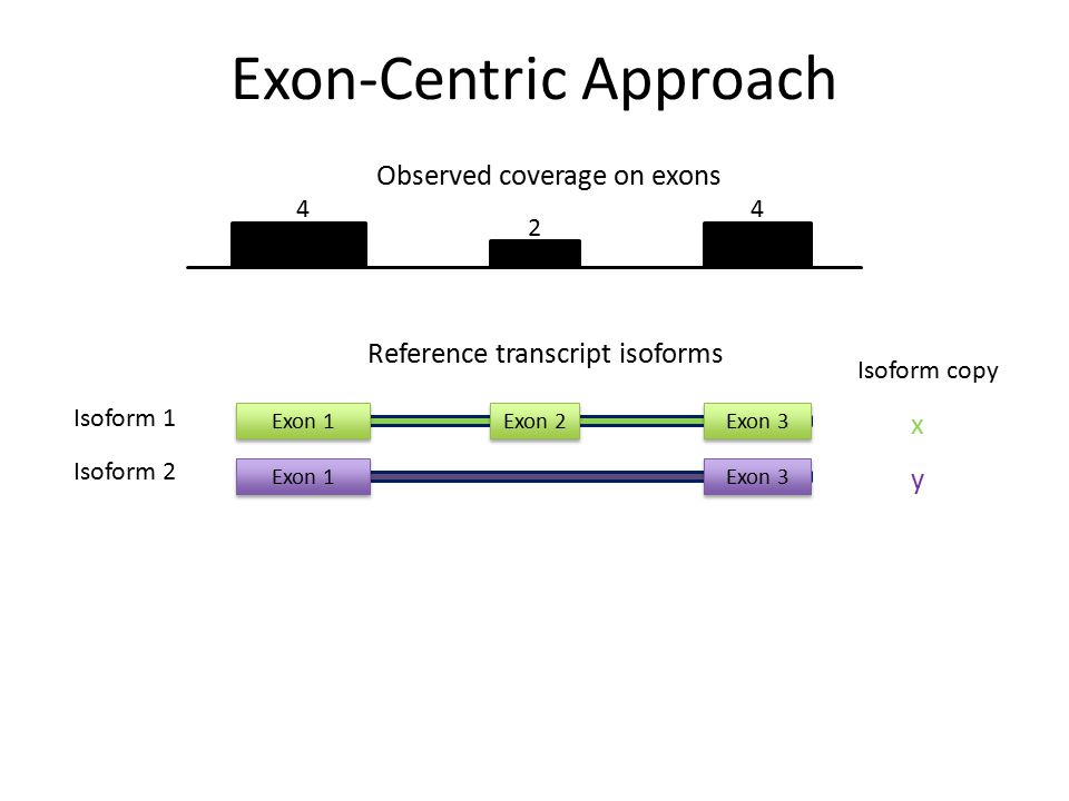 Observed coverage on exons 4 2 4 Isoform 1 Isoform 2 Reference transcript isoforms Exon 1Exon 2Exon 3 Exon 1Exon 3 x y Isoform copy Exon-Centric Appro