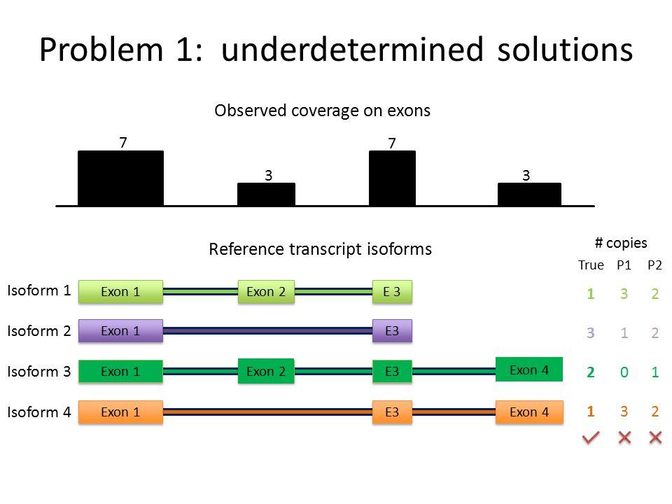 Reference transcript isoforms Isoform 1 Isoform 2 Exon 1Exon 2E 3 Exon 1E3 Exon 1Exon 2E3 Exon 4 Exon 1E3 Exon 4 Isoform 3 Isoform 4 # copies 7 3 7 3