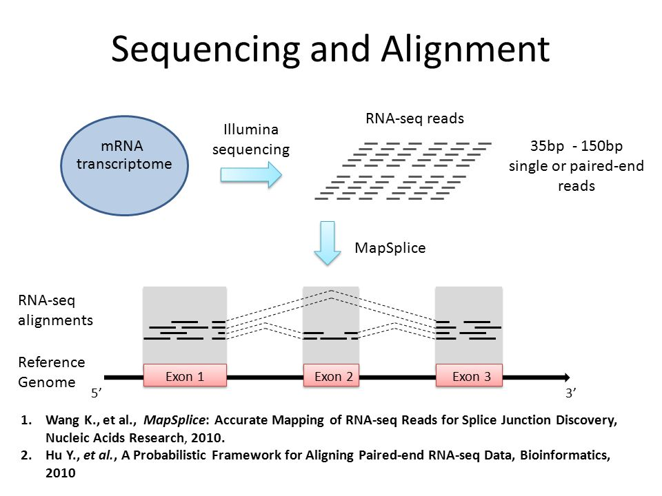 RNA-seq alignments 1.Wang K., et al., MapSplice: Accurate Mapping of RNA-seq Reads for Splice Junction Discovery, Nucleic Acids Research, 2010. 2.Hu Y