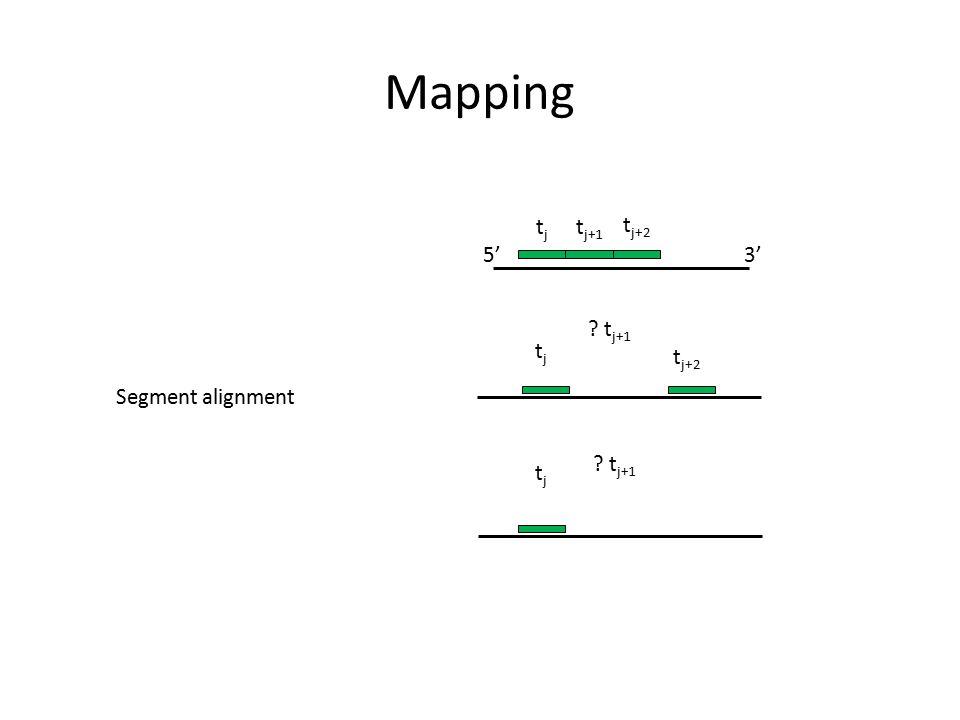 Mapping tjtj t j+2 ? t j+1 tjtj t j+1 3'5' tjtj ? t j+1 t j+2 Segment alignment