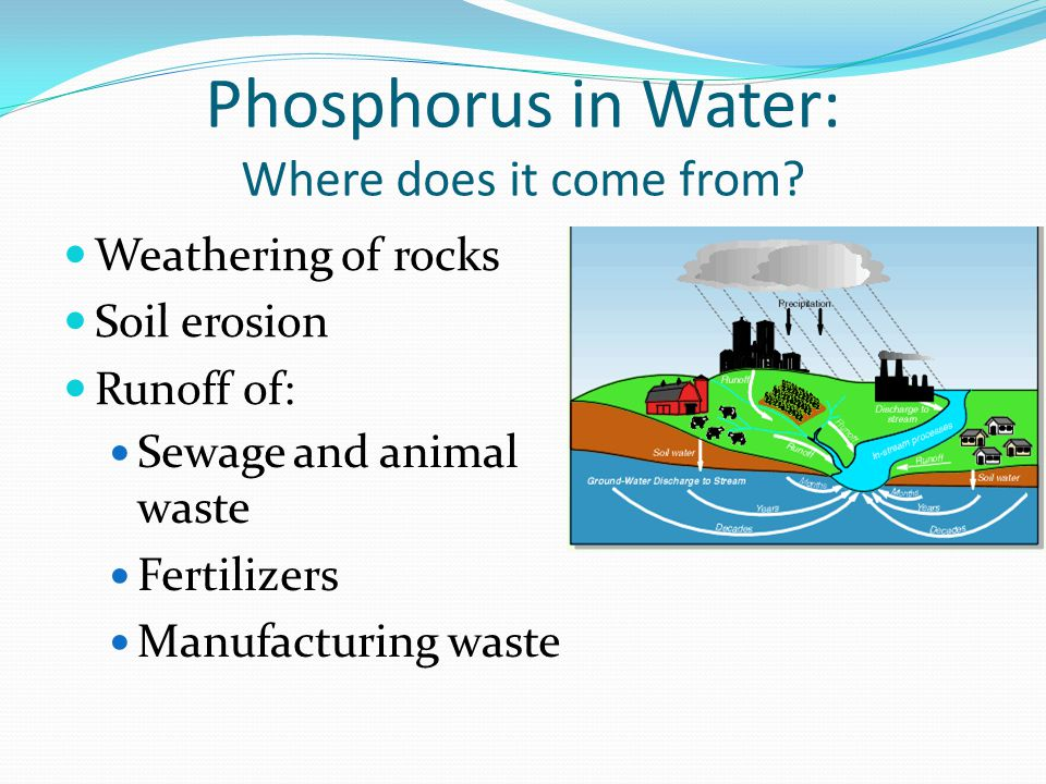 Phosphorus in Water: Where does it come from.