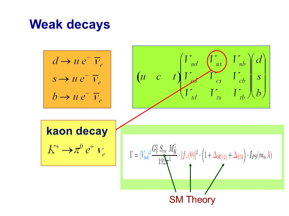 Weak decays  kaon decay SM Theory