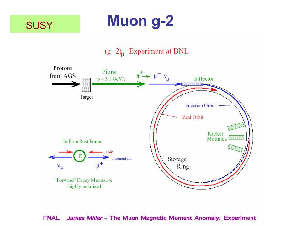 Muon g-2 SUSY
