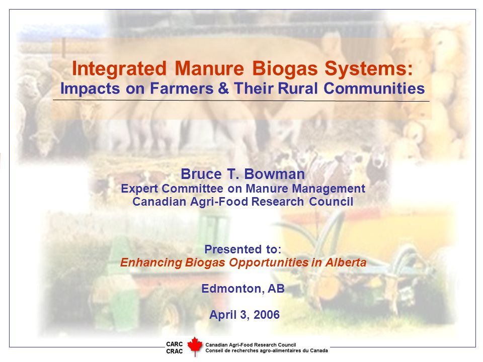 Objective 1 To identify and discuss links between:  Environmental issues,  Economic issues, and  Societal issues …..