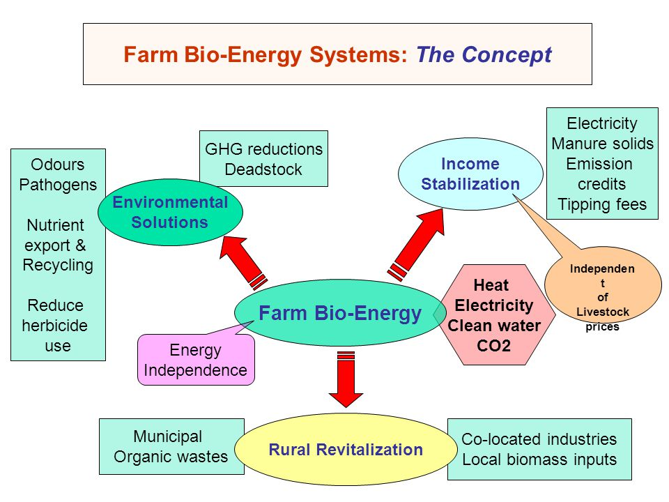 Farm Bio-Energy Systems: The Concept Electricity Manure solids Emission credits Tipping fees Heat Electricity Clean water CO2 Municipal Organic wastes