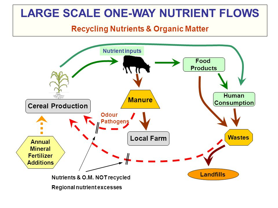  Conditions for exporting surplus manure nutrients: 1.