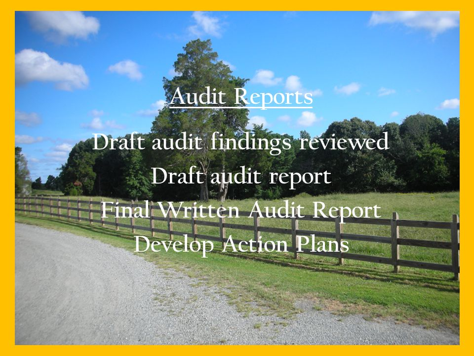 Audit Reports Draft audit findings reviewed Draft audit report Final Written Audit Report Develop Action Plans 11