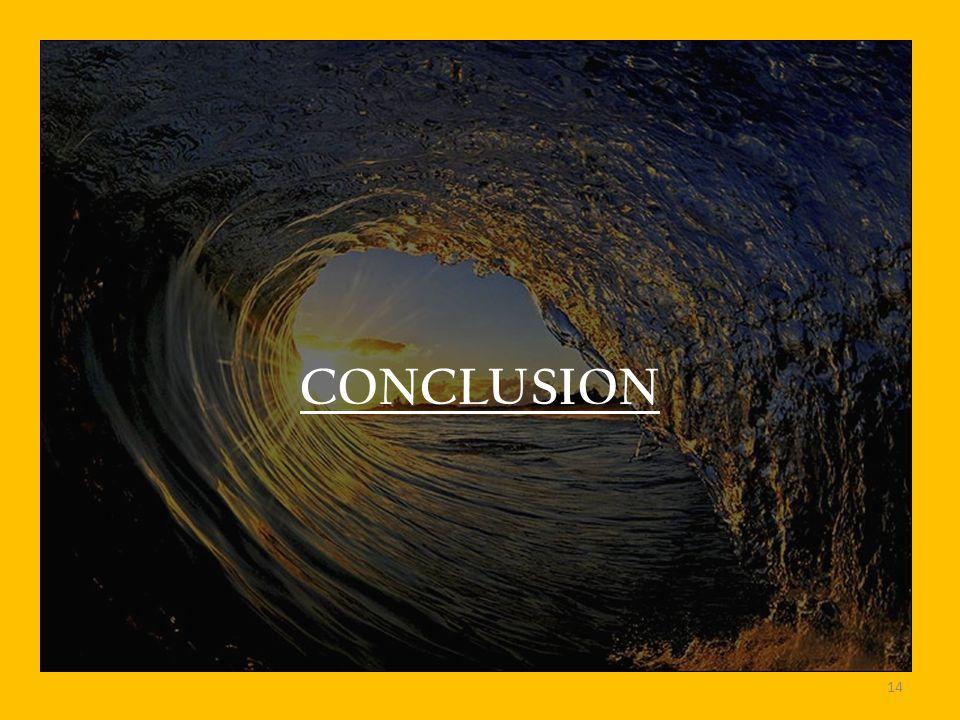 CONCLUSION 14