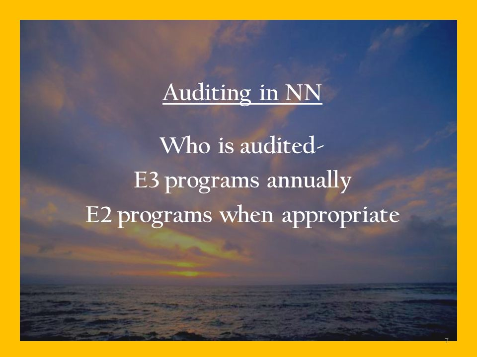 Auditing in NN Who is audited- E3 programs annually E2 programs when appropriate 7