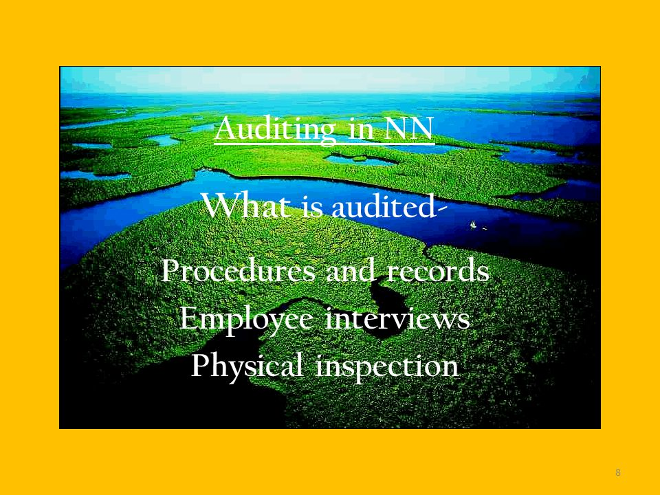 Auditing in NN What is audited- Procedures and records Employee interviews Physical inspection 8