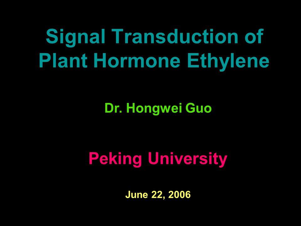 Signal Transduction of Plant Hormone Ethylene Dr. Hongwei Guo Peking University June 22, 2006