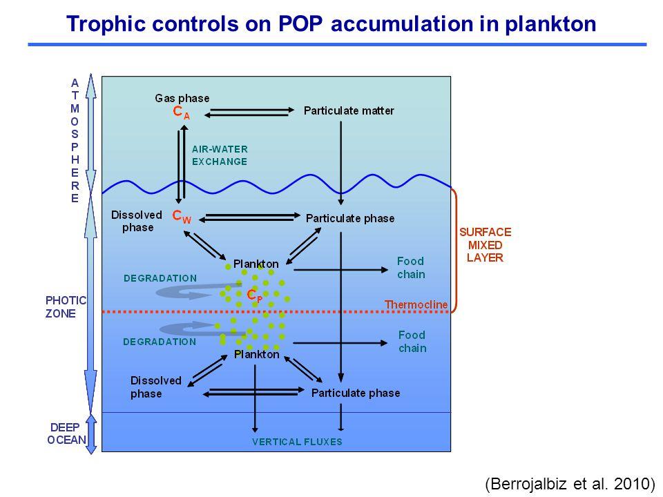 Trophic controls on POP accumulation in plankton (Berrojalbiz et al. 2010)
