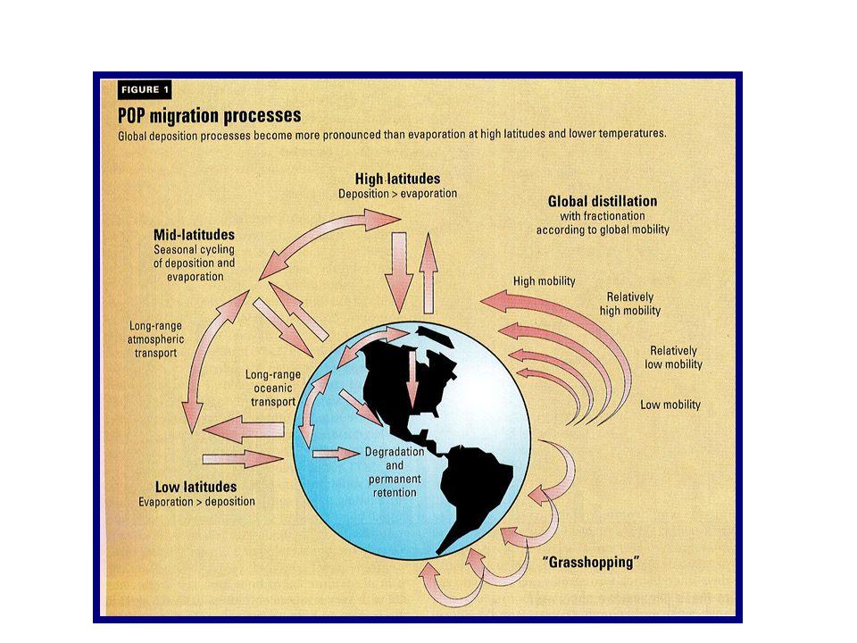 Proceso de destilación global