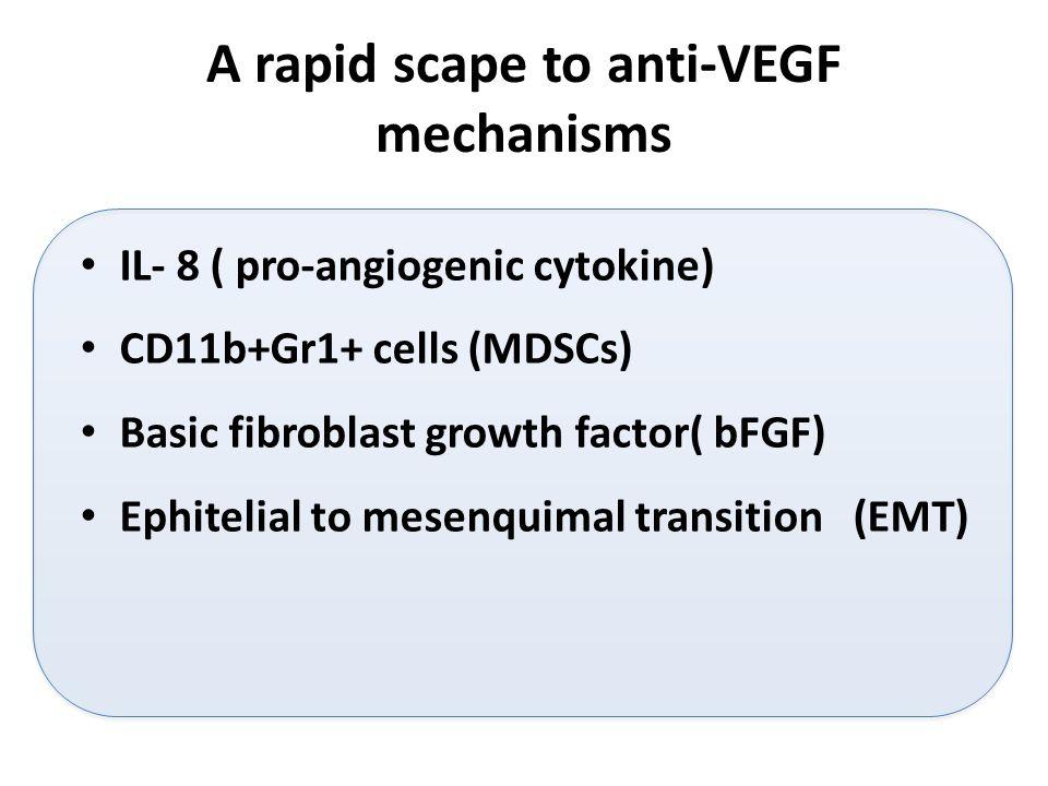 A rapid scape to anti-VEGF mechanisms IL- 8 ( pro-angiogenic cytokine) CD11b+Gr1+ cells (MDSCs) Basic fibroblast growth factor( bFGF) Ephitelial to mesenquimal transition (EMT)
