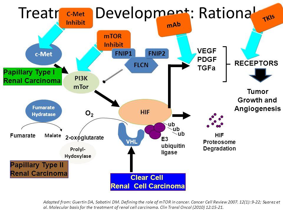 35 Treatment Development: Rationale HIF VHL ub HIF Proteosome Degradation E3 ubiquitin ligase VEGF PDGF TGFa Tumor Growth and Angiogenesis RECEPTORS Clear Cell Renal Cell Carcinoma PI3K mTor c-Met Papillary Type I Renal Carcinoma Prolyl- Hydoxylase O2O2 Fumarate Hydratase Fumarate Malate Papillary Type II Renal Carcinoma 2-oxoglutarate Adapted from: Guertin DA, Sabatini DM.