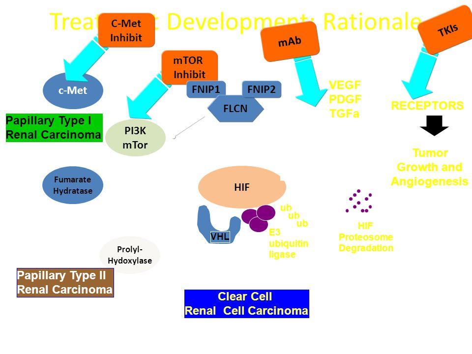 Treatment Development: Rationale HIF VHL ub HIF Proteosome Degradation E3 ubiquitin ligase VEGF PDGF TGFa Tumor Growth and Angiogenesis RECEPTORS Clear Cell Renal Cell Carcinoma PI3K mTor c-Met Papillary Type I Renal Carcinoma Prolyl- Hydoxylase O2O2 Fumarate Hydratase Fumarate Malate Papillary Type II Renal Carcinoma 2-oxoglutarate Adapted from: Guertin DA, Sabatini DM.