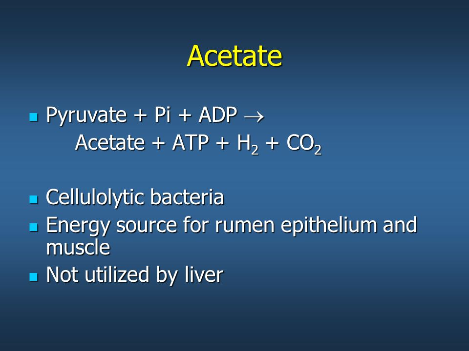 Acetate Pyruvate + Pi + ADP  Pyruvate + Pi + ADP  Acetate + ATP + H 2 + CO 2 Cellulolytic bacteria Cellulolytic bacteria Energy source for rumen epithelium and muscle Energy source for rumen epithelium and muscle Not utilized by liver Not utilized by liver