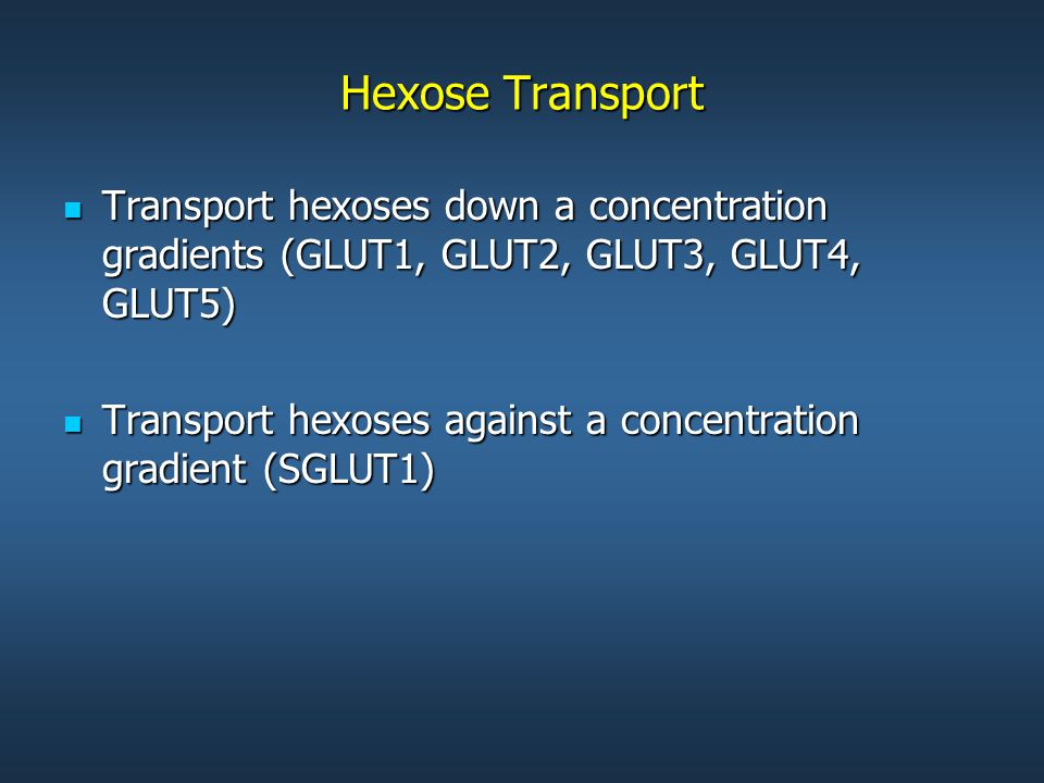 Hexose Transport Transport hexoses down a concentration gradients (GLUT1, GLUT2, GLUT3, GLUT4, GLUT5) Transport hexoses down a concentration gradients (GLUT1, GLUT2, GLUT3, GLUT4, GLUT5) Transport hexoses against a concentration gradient (SGLUT1) Transport hexoses against a concentration gradient (SGLUT1)