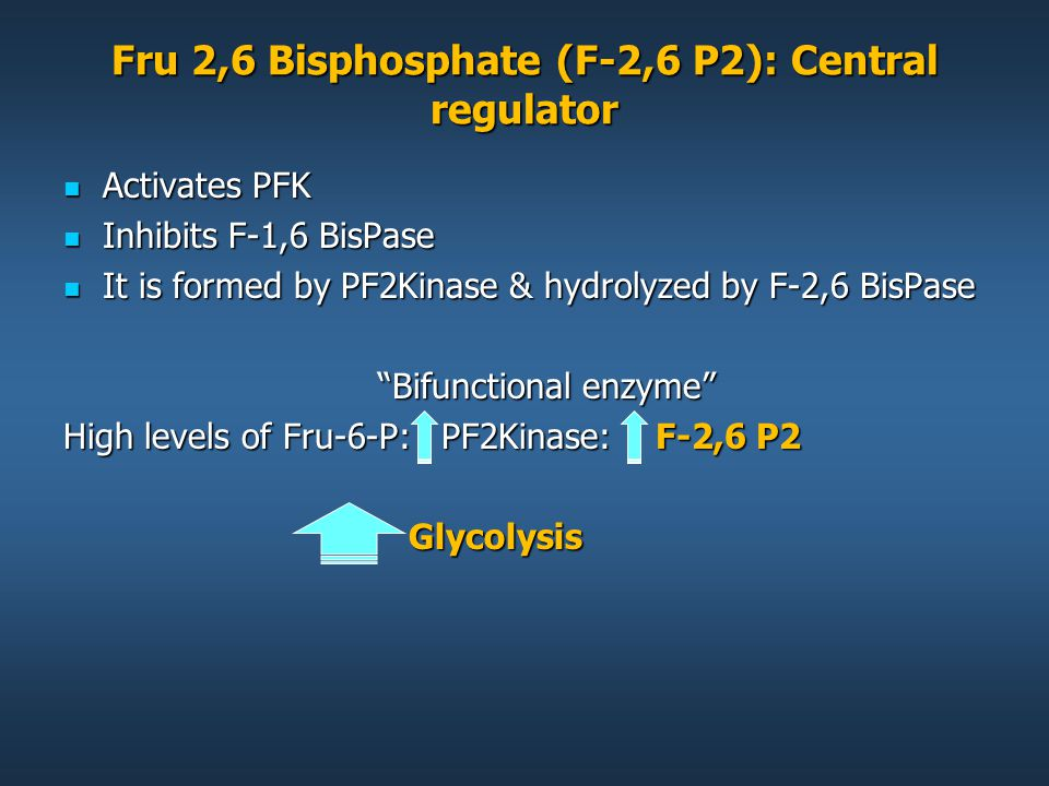 Fru 2,6 Bisphosphate (F-2,6 P2): Central regulator Activates PFK Activates PFK Inhibits F-1,6 BisPase Inhibits F-1,6 BisPase It is formed by PF2Kinase & hydrolyzed by F-2,6 BisPase It is formed by PF2Kinase & hydrolyzed by F-2,6 BisPase Bifunctional enzyme High levels of Fru-6-P: PF2Kinase: F-2,6 P2 Glycolysis Glycolysis