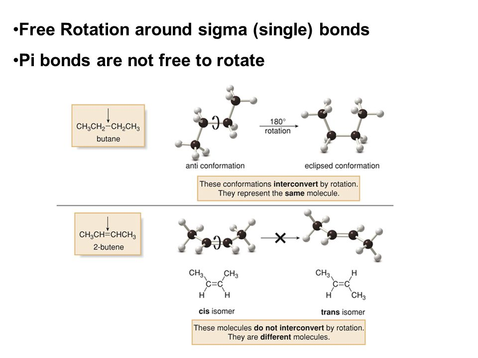 Because of this lack of free-rotation, two stereoisomers of 2-butene are possible.