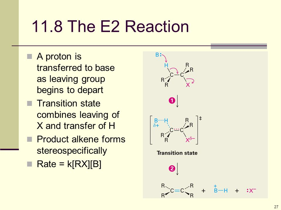 27 11.8 The E2 Reaction A proton is transferred to base as leaving group begins to depart Transition state combines leaving of X and transfer of H Pro