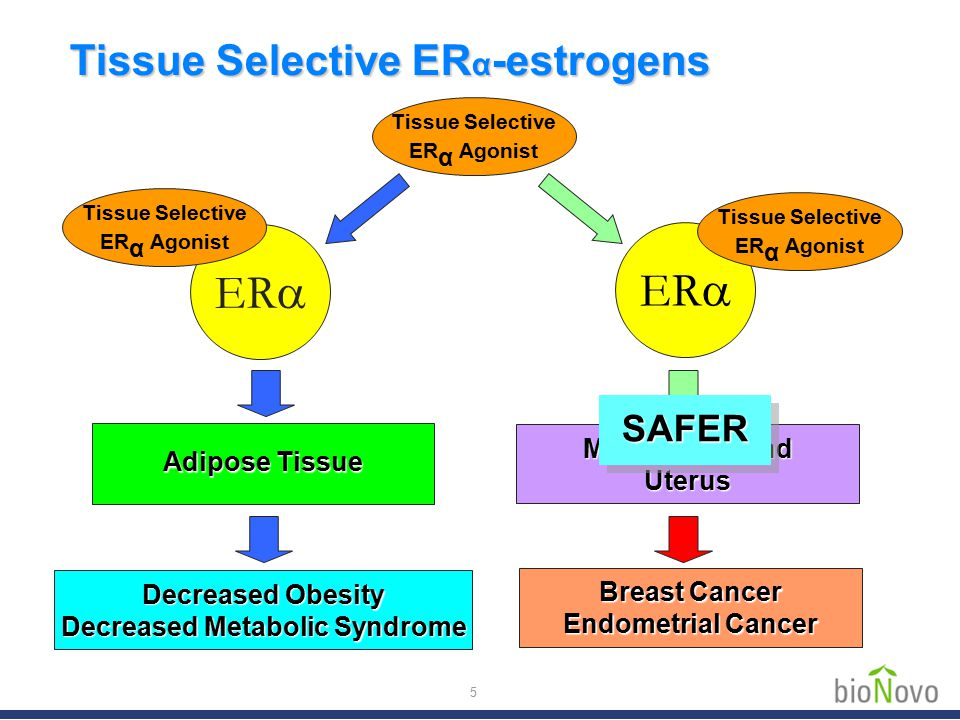 To identify tissue selective ER  agonists in plants  Methods 1.